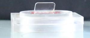 अक्रालिक का साबुन बनाने का सांचा - का पट छाया चित्र - जिसके अन्दर साबुन निकालने का हत्था दिखाया गया है.